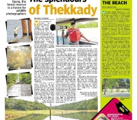 deccan-chronicle-1